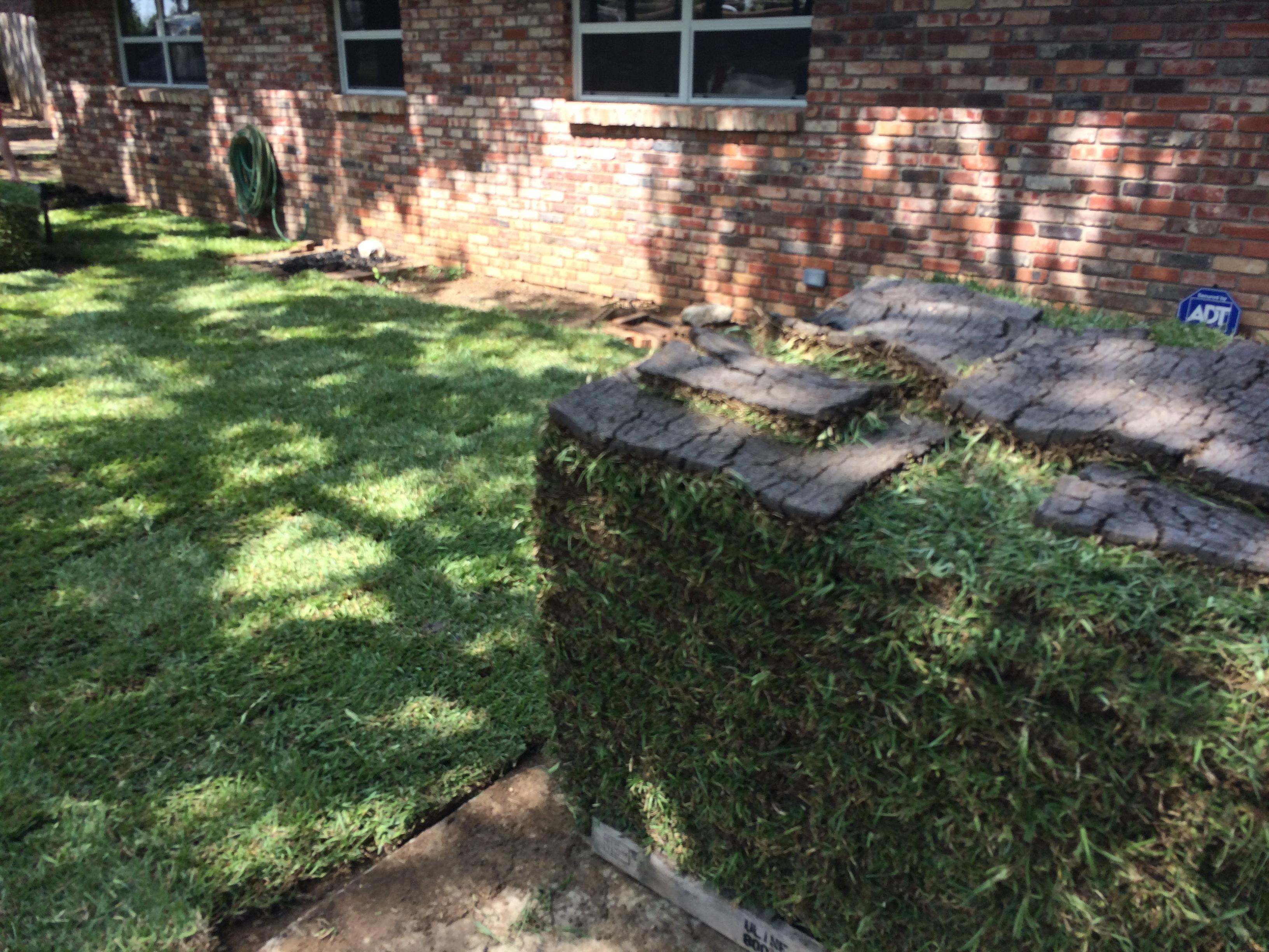 Sod & Grass Installation: Plano, TX: Texas Pride Landscapes
